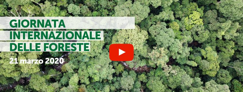 Giornata Internazionale delle Foreste 2020